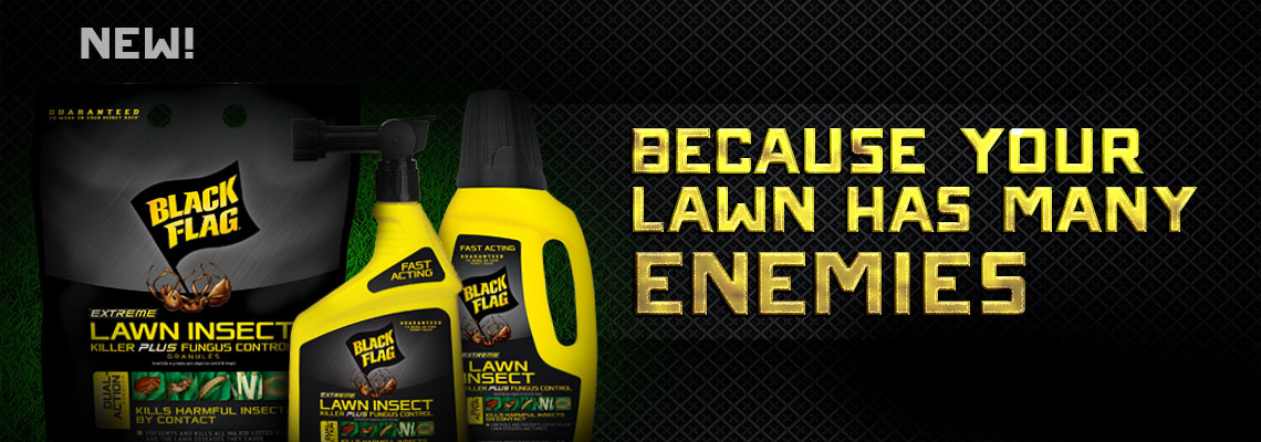 Black Flag Lawn Insect Products