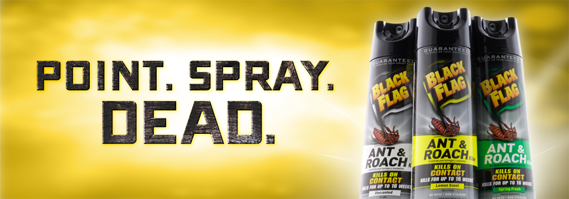 Point Spray Dead