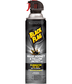 insect and pest control products black flag