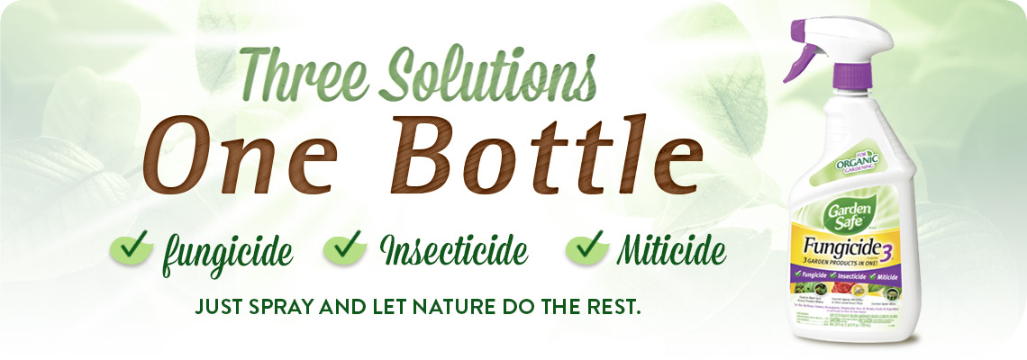 Three Solutions One Bottle