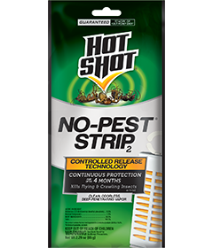 Fogger For Bed Bugs General Insect Control | Hot Shot