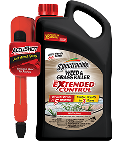 Spectracide Weed & Grass Killer With Extended Control AccuShot Sprayer