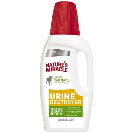 Dog S Urine Has Strong Odor