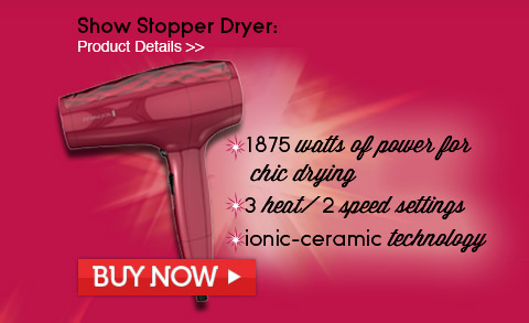 Show Stopper Hair Dryer