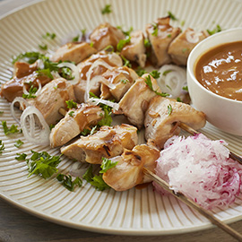 russell hobbs thai chicken satay recipe