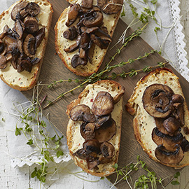 russell hobbs goat cheese and mushroom recipe