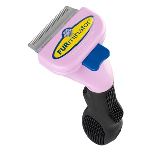 Use the FURminator deshedding tool for small short hair cats for how to keep your cat from shedding.