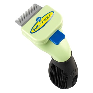 Reduce dog shedding in your home when you use this shedding tool for grooming a short haired toy-breed dog.