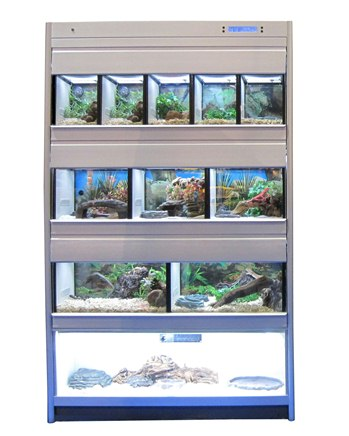 Look no further for the right reptile animal display system for your needs.