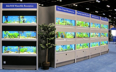 Commercial aquariums animal displays research tank systems for Your fish store