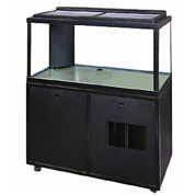 In terms of research tanks, these refrigerated specimen tank holding systems are top notch.