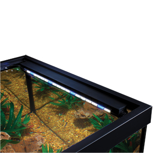 Hidden led lighting marineland freshwater saltwater and reef aquarium led lighting mozeypictures Image collections