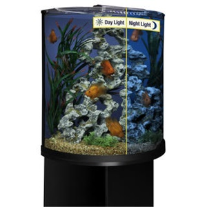 Shop aquariums and tanks, including this great half moon aquarium with LED lighting.