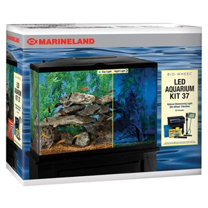 Freshwater saltwater led aquarium kits marineland for Saltwater fish tank kit