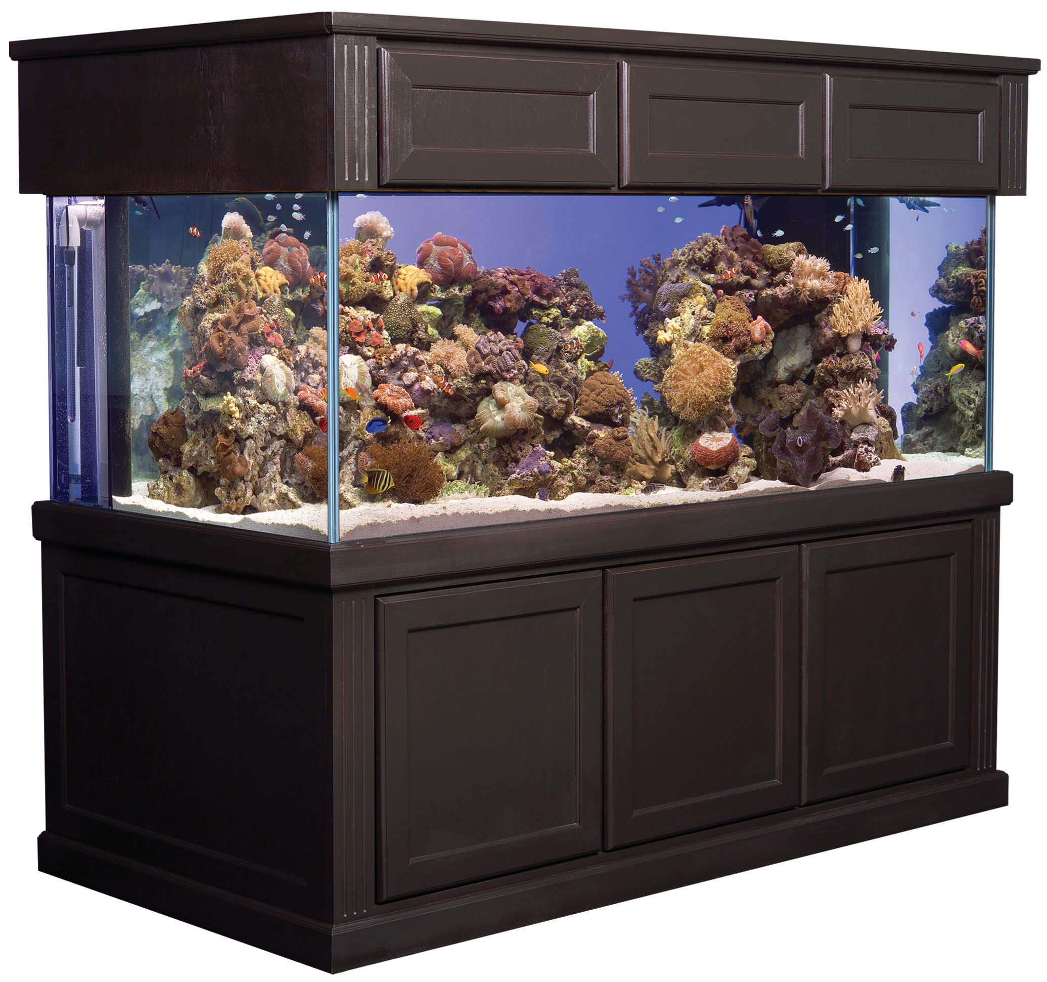aquarium glass - Deep Starphire Overflow Glass Aquarium ...