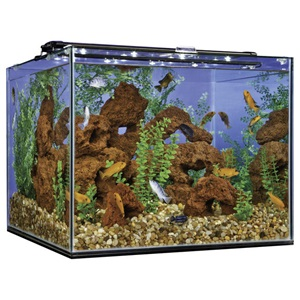 Cube column glass aquariums and tanks marineland for Cube saltwater fish tank