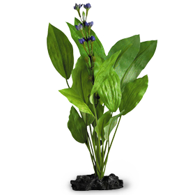 Find the aquarium plants you've been looking for at Marineland, including SeaGarden's artificial freshwater plants.