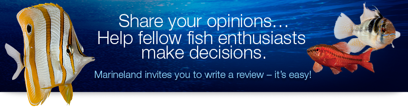 Share your opinions and help other fish enthusiasts make decisions by writing a review of Marineland Products.