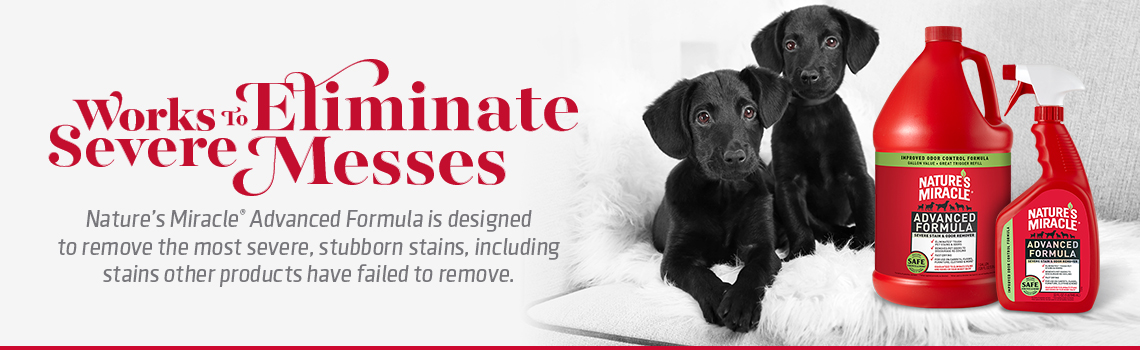 Nature's Miracle works to eliminate severe pet messes.