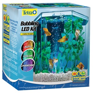 With the addition of a heater, you can turn Tetra's 1 Gallon Bubbling LED Desktop Aquarium Kit into a small tropical tank!