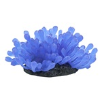 ColorFusion Wonderland Anemone Blue