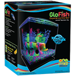 GloFish® Aquarium Kit - Cube 1.5 Gallon