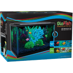 GloFish® Aquarium Kit - Glass 5 & 10 Gallon