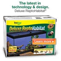 Tetrafauna Deluxe Repto Habitat – The latest in technology & design.