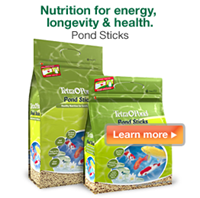 TetraPond Pond Sticks – Pond fish nutrition for energy, longevity & health.