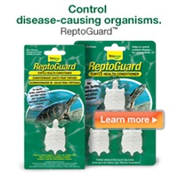 Control disease-causing organisms with Tetrafauna ReptoGuard.