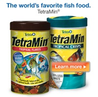TetraMin – The world's favorite fish food