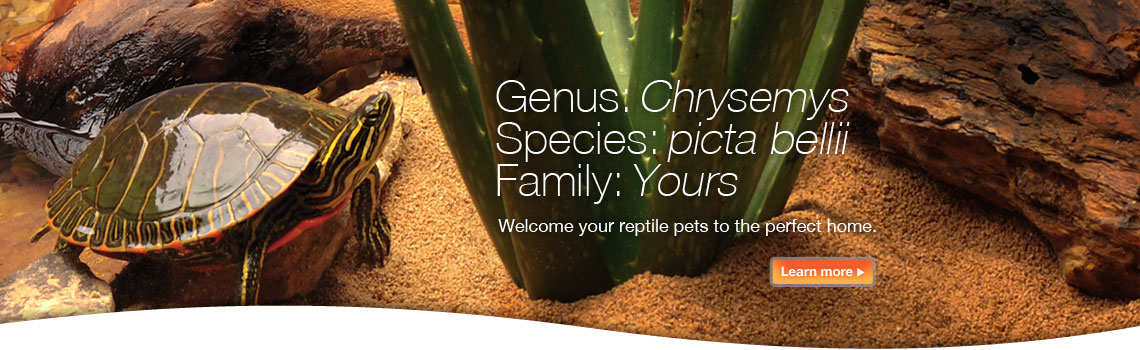 Tetrafauna - Welcome your reptile petsto the perfect home