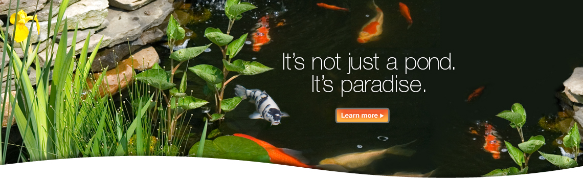 TetraPond. It's not just a pond, it's paradise.